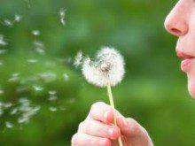 Quais as alergias dos seus filhos?
