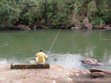 Gosta de pescar?